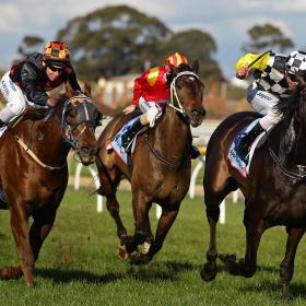 horse racing form guide australia