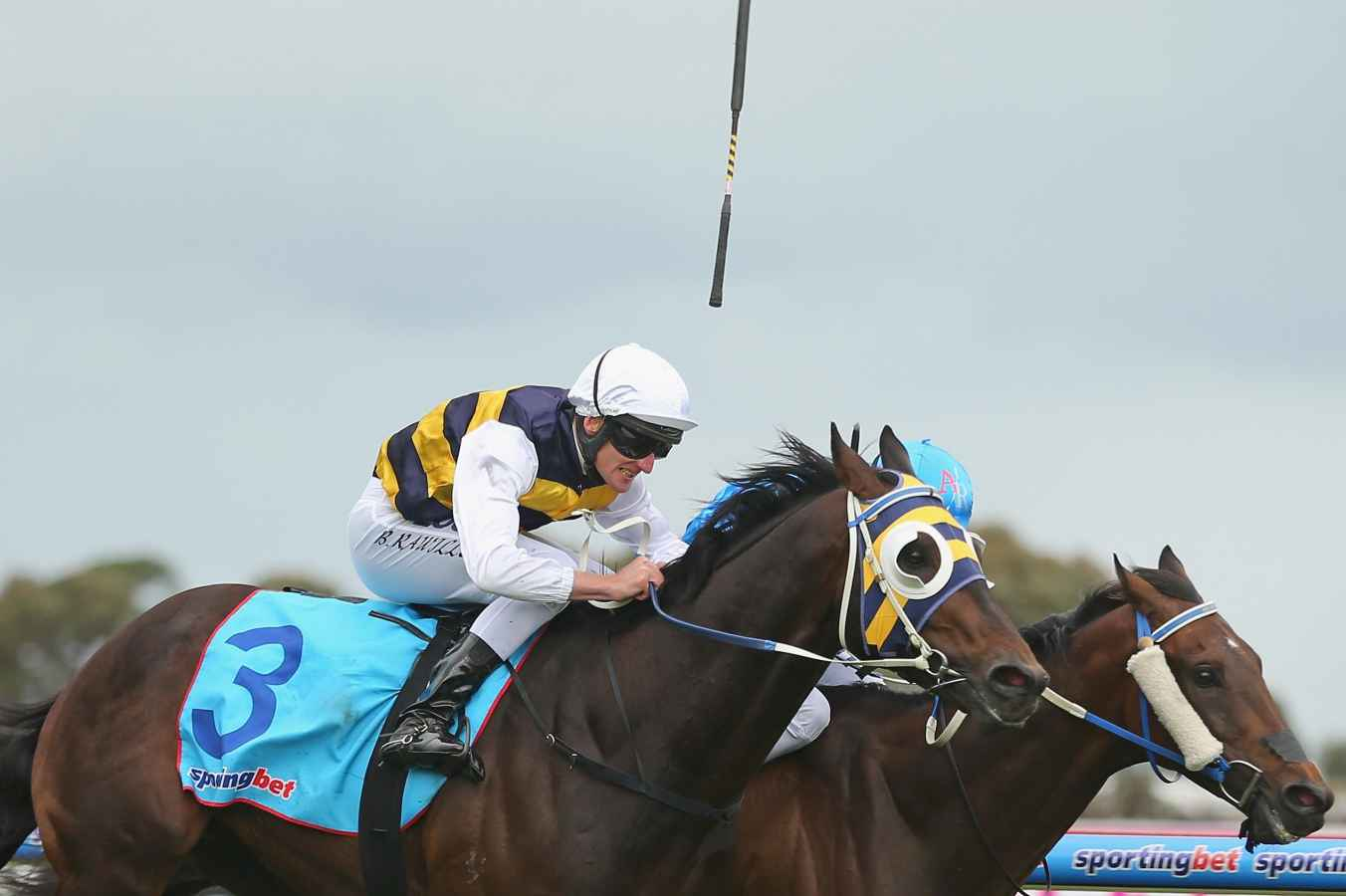 free horse racing form guide