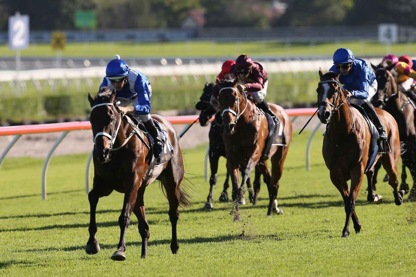 Winx to face 9 rivals in Chipping Norton