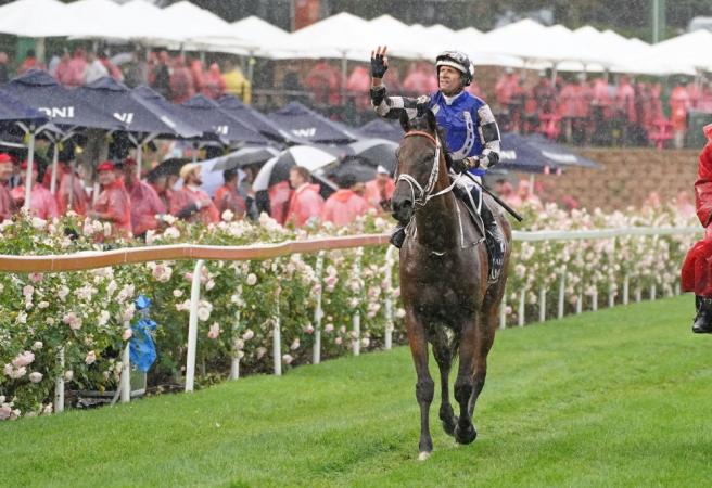 Racing: Saturday Selections - The Championships Day 1