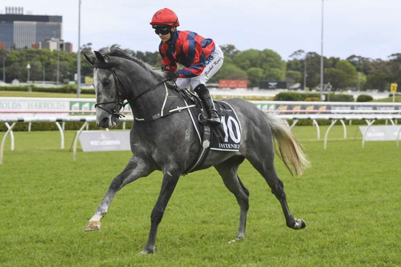 Battenburg heads to Melbourne off a G1 placing