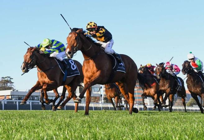 Sir Rupert Clarke Stakes: Star SA duo set for epic rematch
