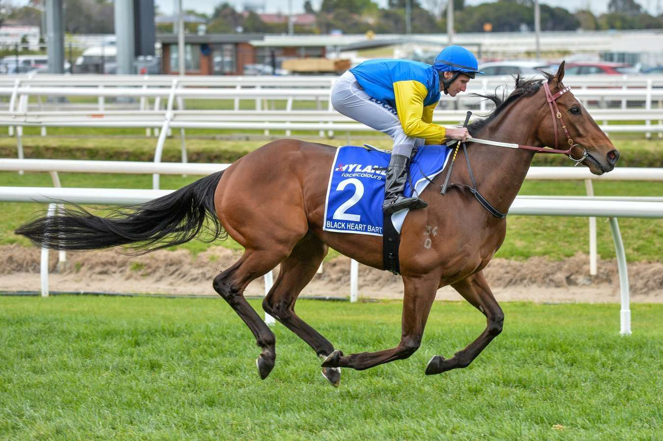 Railway Stakes day preview at Ascot