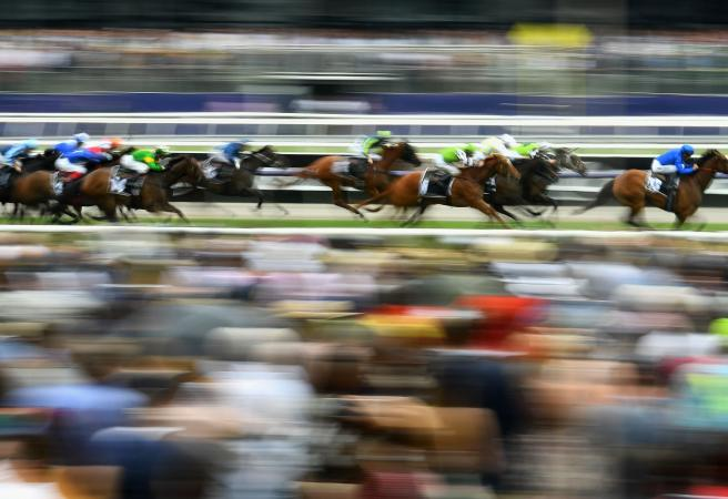 Melbourne Cup Day: Race-by-race preview and tips