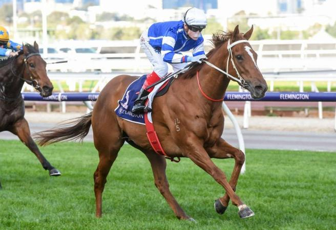 Racing: Saturday Selections - The Goodwood Day