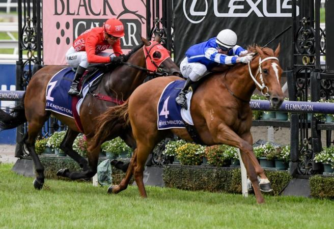 Racing: Saturday Selections Black Caviar Lightning Stakes Day
