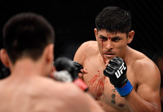 UFC Fight Night Singapore: Lacerated eyelids and beaten Aussies