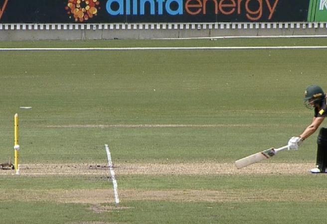 WATCH: Stump mic saves Aussie skipper from being run out