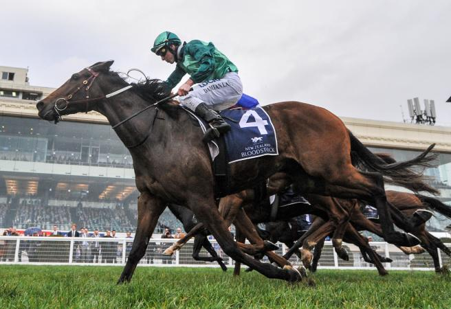 Humidor out to defend Makybe Diva crown