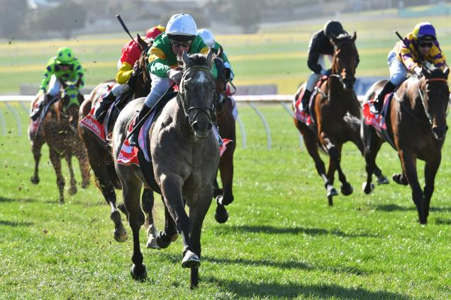 Jack Martin and Fully Maxed storm to victory at Sandown