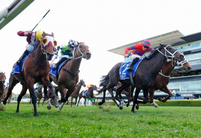 Verry Elleegant draws well for Randwick defence