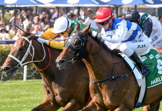 Kah claims first G1 as Harlem defends Australian Cup crown
