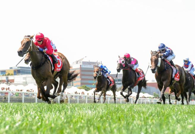 Rough As Guts: Melbourne Cup Day Roughie Picks