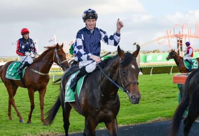 Russian Camelot beats Dalasan in South Australian Derby