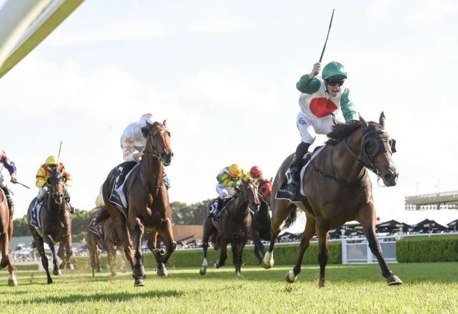 Castelvecchio wins G1 Champagne Stakes