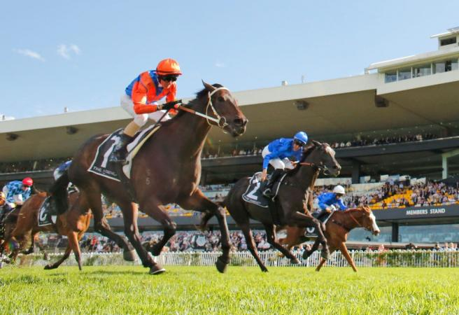 Racing: Saturday Selections - Winx Stakes Day