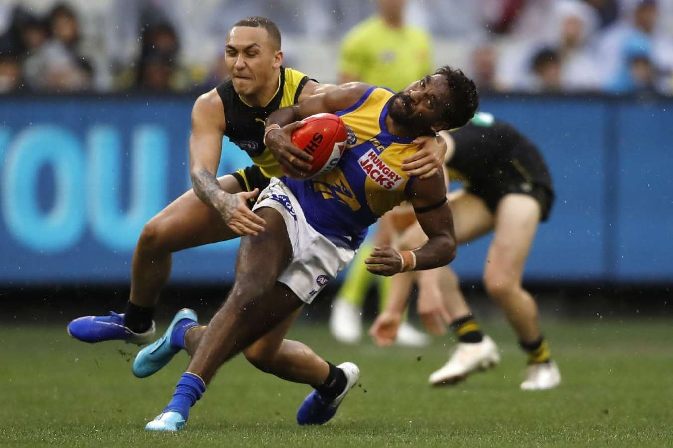 Afl round 14 betting tips public ncaa betting lines