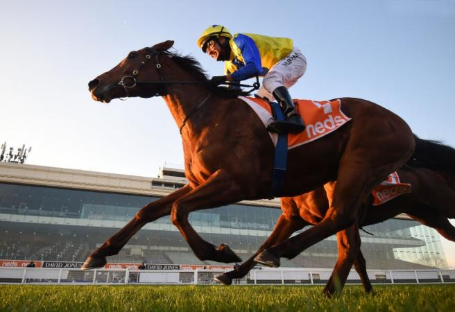 Racing: Wednesday Selections