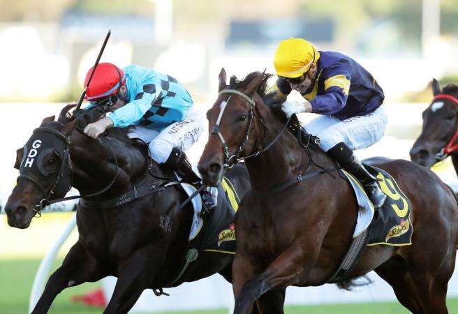 Tofane takes out Group One All Aged Stakes
