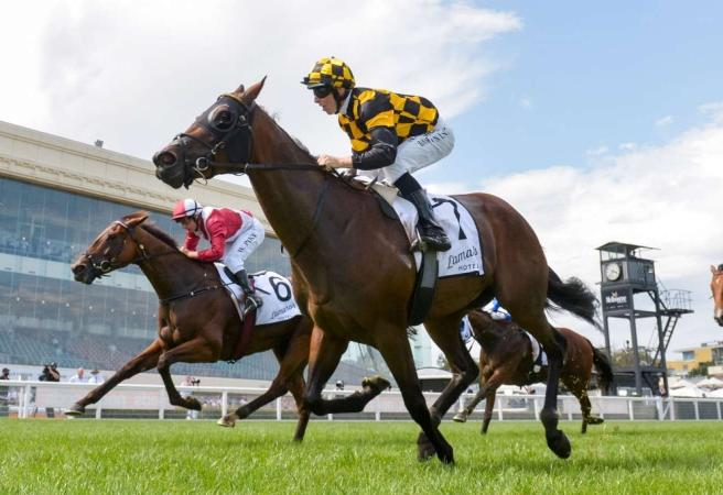 Racing: Saturday Selections - Memsie Stakes Day
