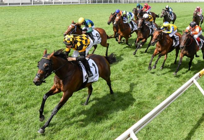 Racing: Saturday Selections Blue Diamond Stakes Day