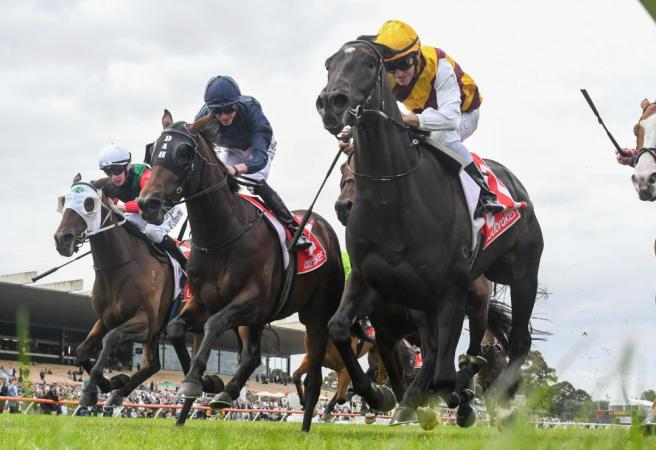 Racing in Victoria temporarily suspended
