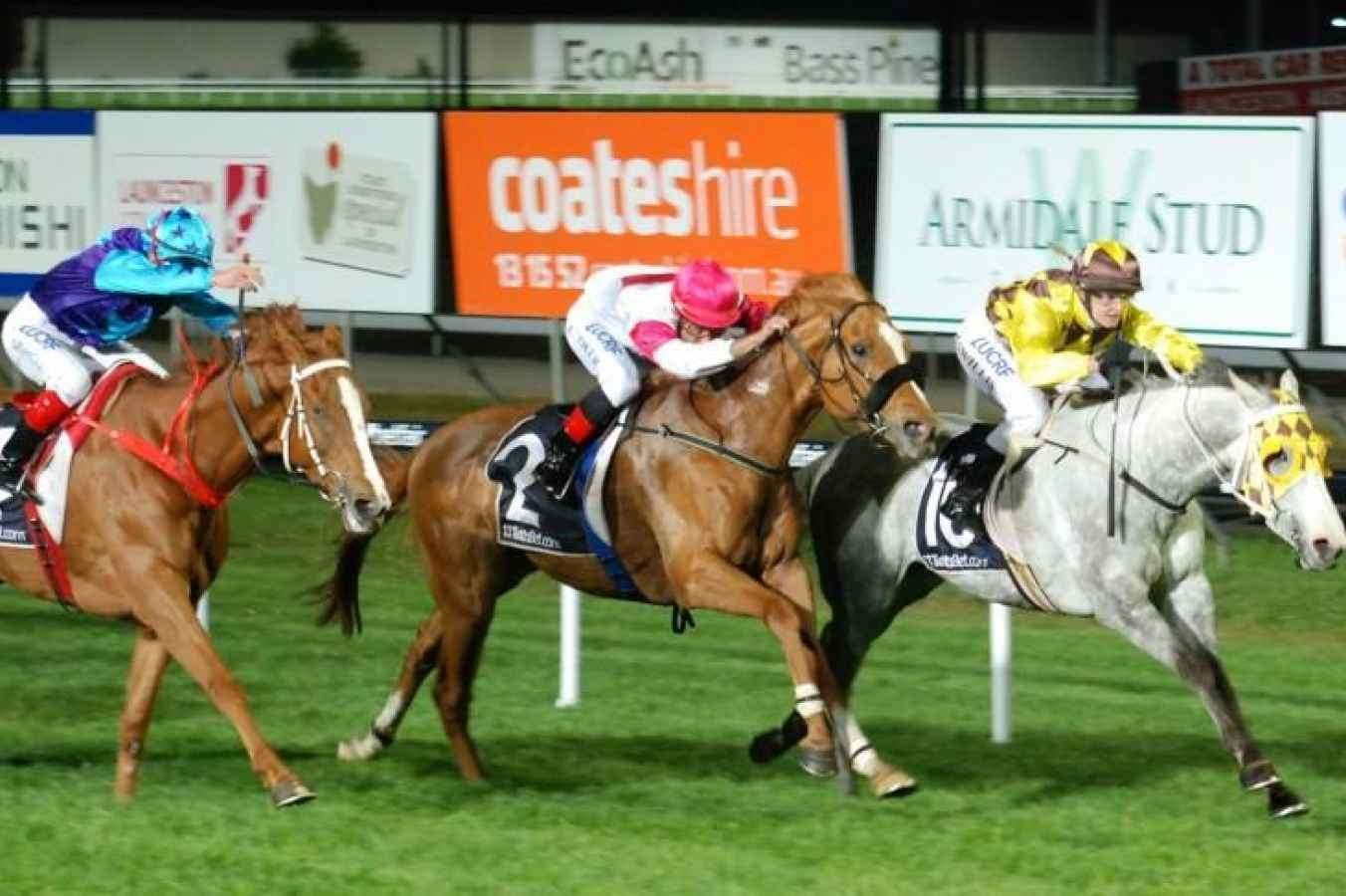 Launceston preview and best bets: Wednesday November 13 - Punters