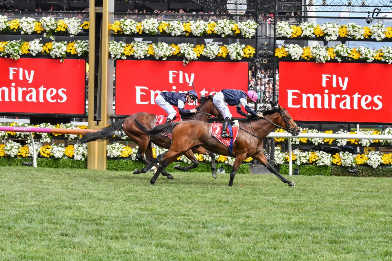 Finishing Order Melbourne Cup