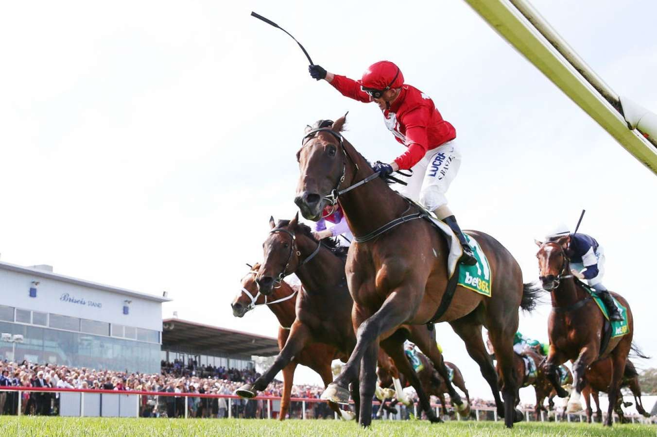 Runaway attempts shortcut to Melbourne Cup