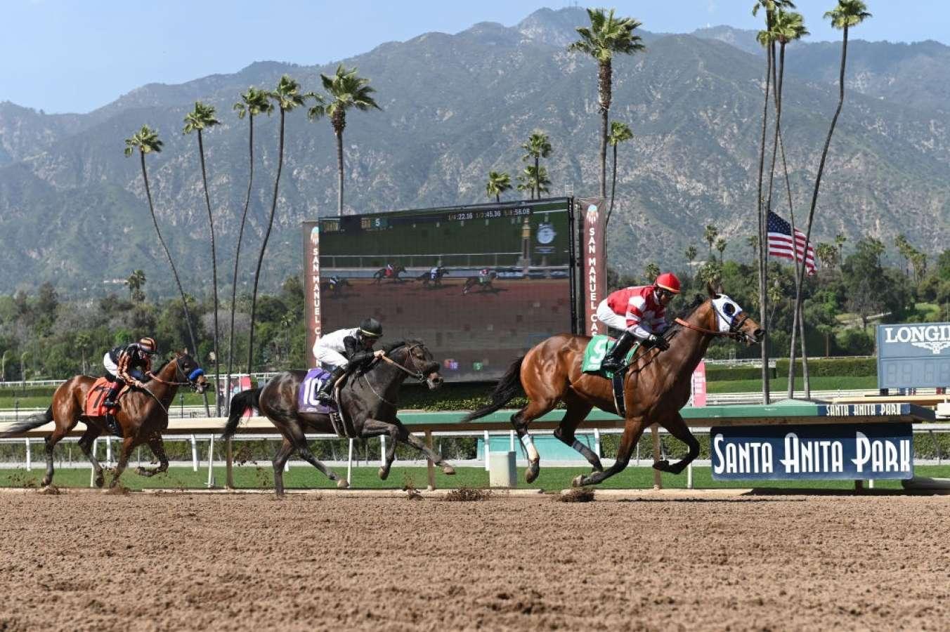 Another Horse Has Died At Santa Anita