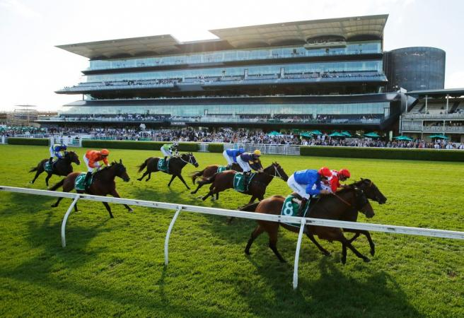 Racing: Saturday Selections - All Aged Stakes Day