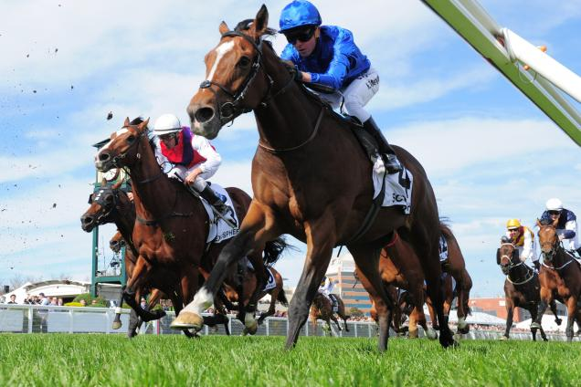 Scottish was runner-up in last year's Caulfield Cup