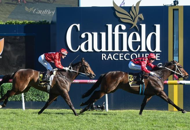 Caulfield Guineas Day Tips & Preview