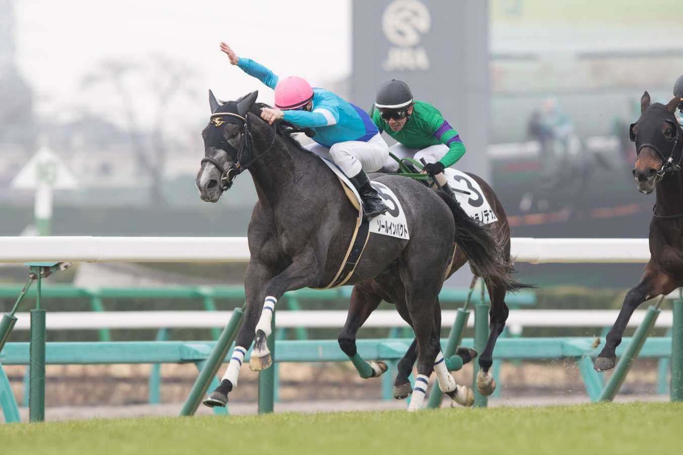Two Japanese horses confirmed Cup entries