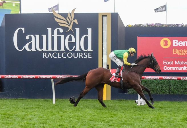 Caulfield Preview