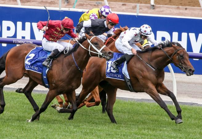 Sunlight wins the G1 Coolmore Stud Stakes at Flemington