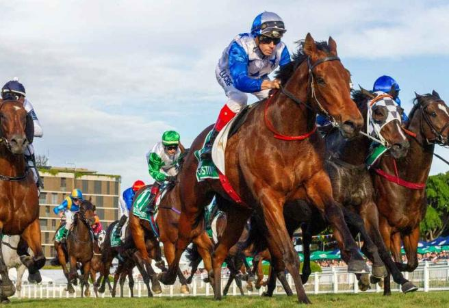 Racing: Saturday Selections - Queensland Derby Day
