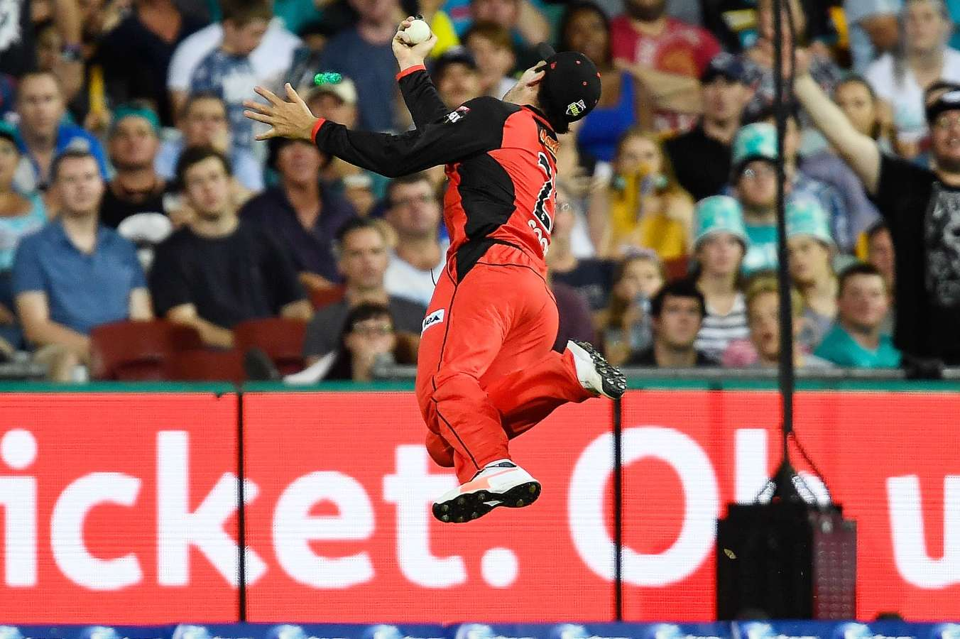 BBL SF Preview: Adelaide Strikers vs Melbourne Renegades