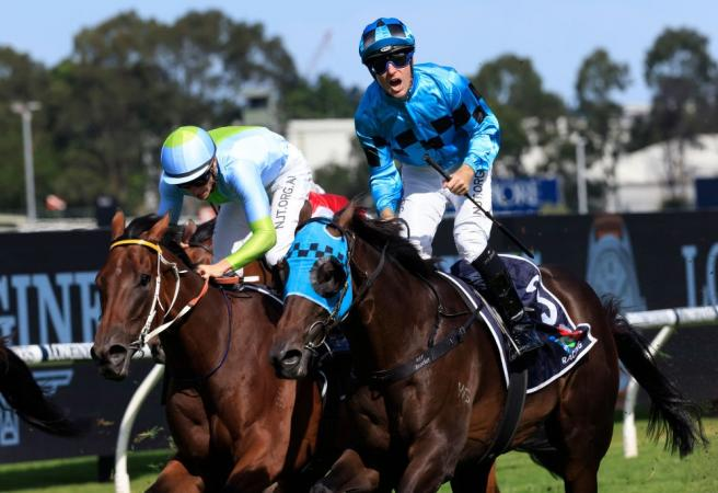 Mo'unga out to mow down Makybe Diva rivals
