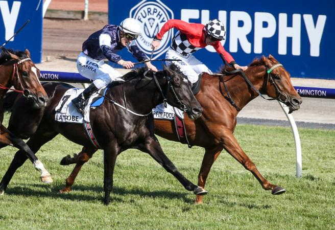 Trap For Fools wins the Mackinnon Stakes for Jarrod McLean
