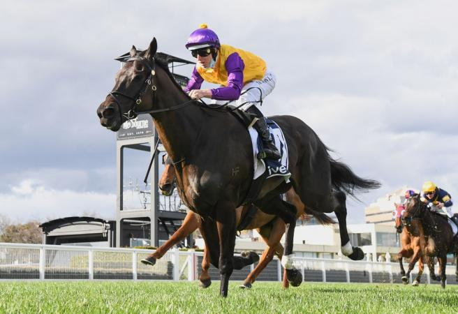 Racing: Saturday Selections - Feehan Stakes Day