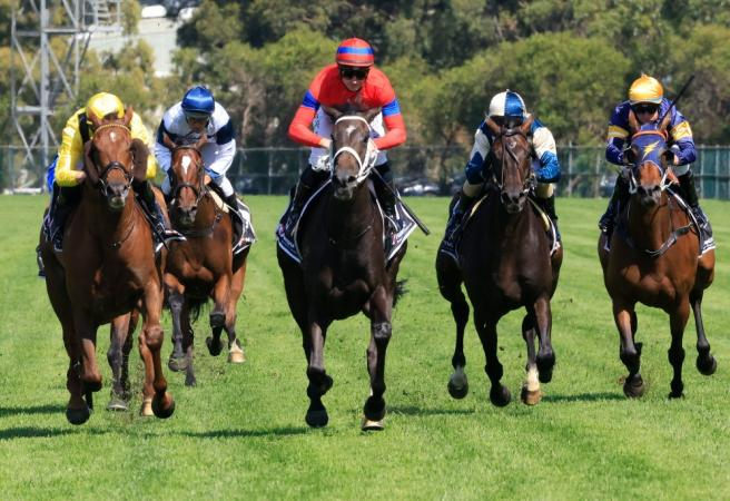 Racing: Saturday Selections - The Championships Day 2