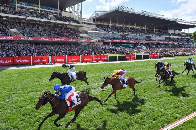 Winx | Horse Profile, Form Guide & Latest Odds