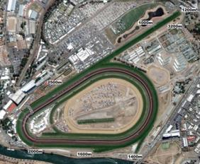 Flemington track map